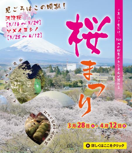 【花より団子!?】時之栖桜まつり2015
