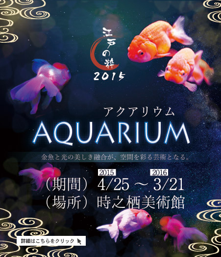 江戸の粋 Aquarium2015